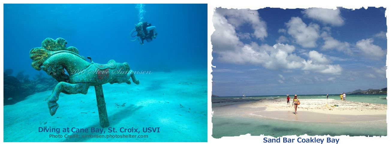 The Caribbean island of St. Croix is a Diving Haventhink