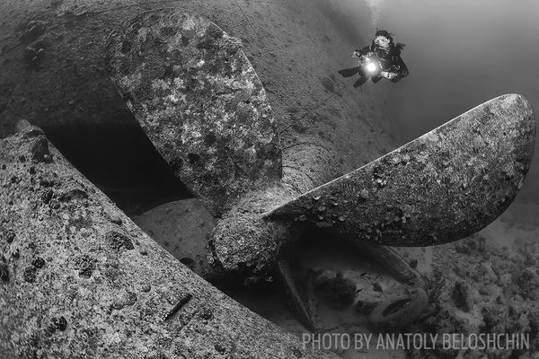 On the 75th anniversary of the SS Thistlegorm's sinking, we look back to one of…