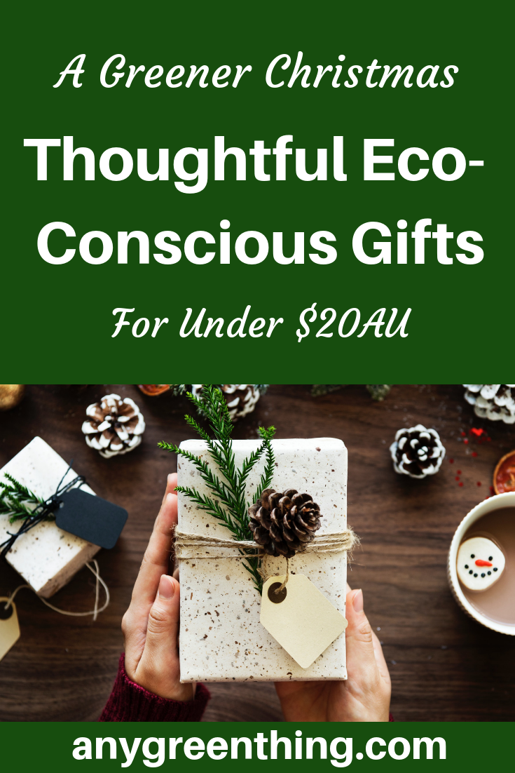 Over 40 eco-friendly Secret Santa Gift Ideas for under $20. Donations/experiences