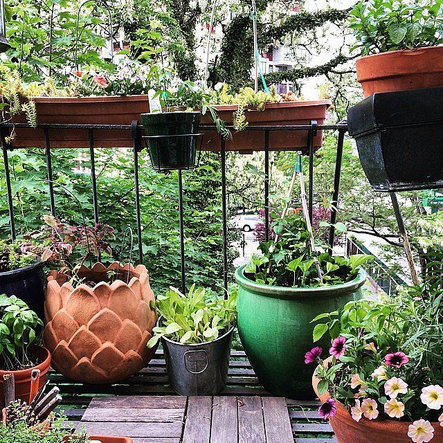 15 Tiny Outdoor Garden Ideas For The Urban Dweller: 9 Fire Escape Gardens That Will Inspire You To Make Your