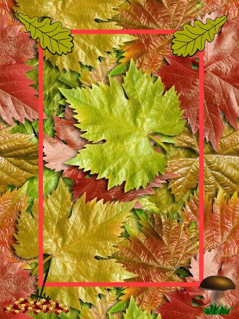 Autumn Frame Png Floral Border Design Frame Background Floral Border