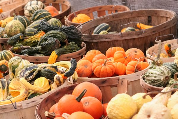 8 Superfoods You Should Eat This Fall  - Even in cold weather, eating seasonal local superfoods like kale, apples, cauliflower, squash, turnips can help prevent cancer, diabetes, heart disease ...
