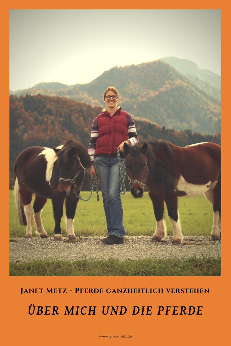 Uber Mich Und Die Pferde Pferde Quarter Horses Freizeitpferde