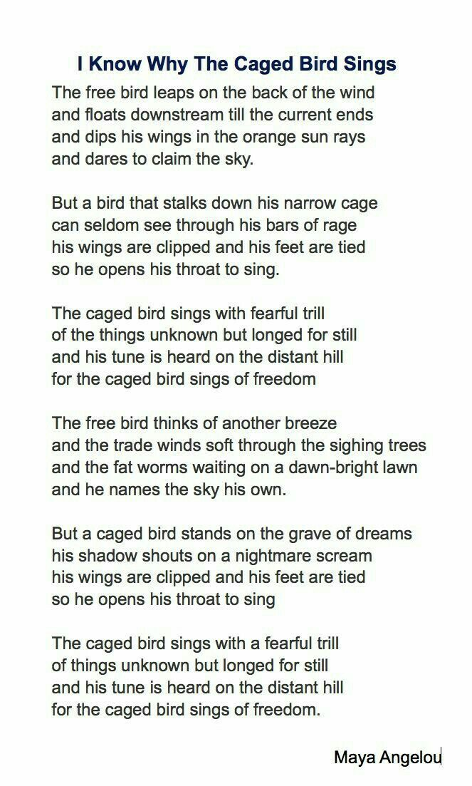 I Know Why The Caged Bird Sings Poetry Quotes Poetry Words Maya Angelou Poems