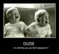 Image detail for -OUR PAGE: Funny Twins Stuff