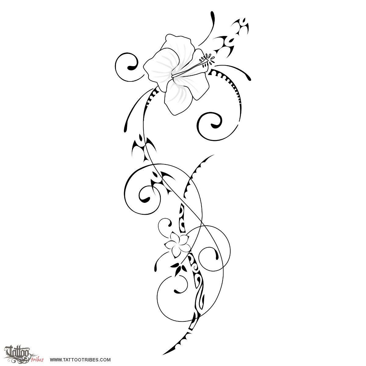 Ātaahua Hibiscus Flowers Represent Beauty, Femininity And
