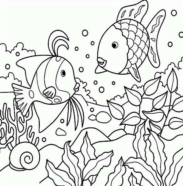 Rainbow Fish Sea Animals Coloring Page