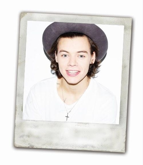 Harry Percfection Styles..