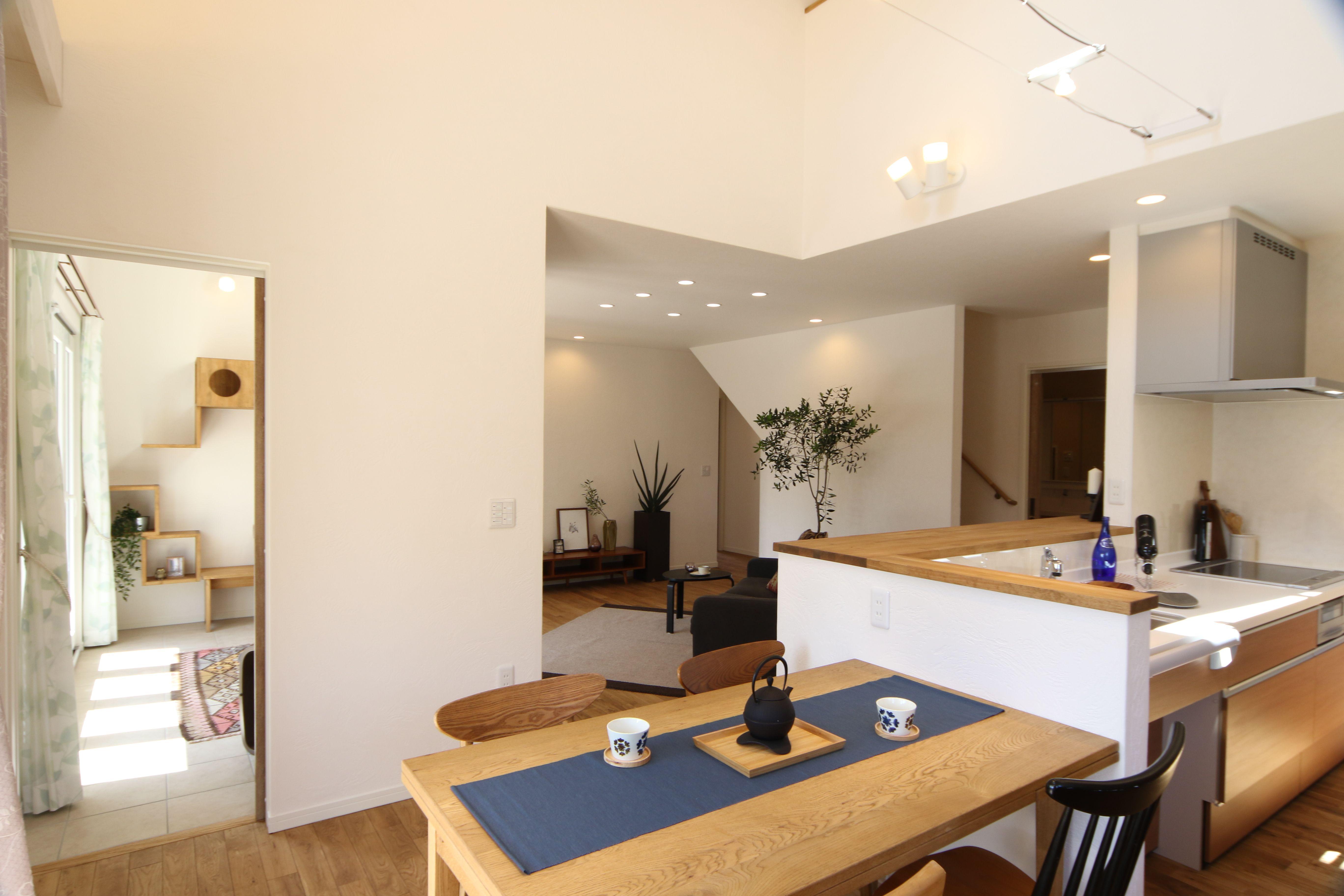 キャットタワーのある家 Daikyohome 2021 自宅で 家 漆喰の家