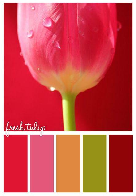 Gold on the ceiling fresh tulip inspiration board di senza tempo jewelry pinterest farben - Farbkombinationen wandfarbe ...