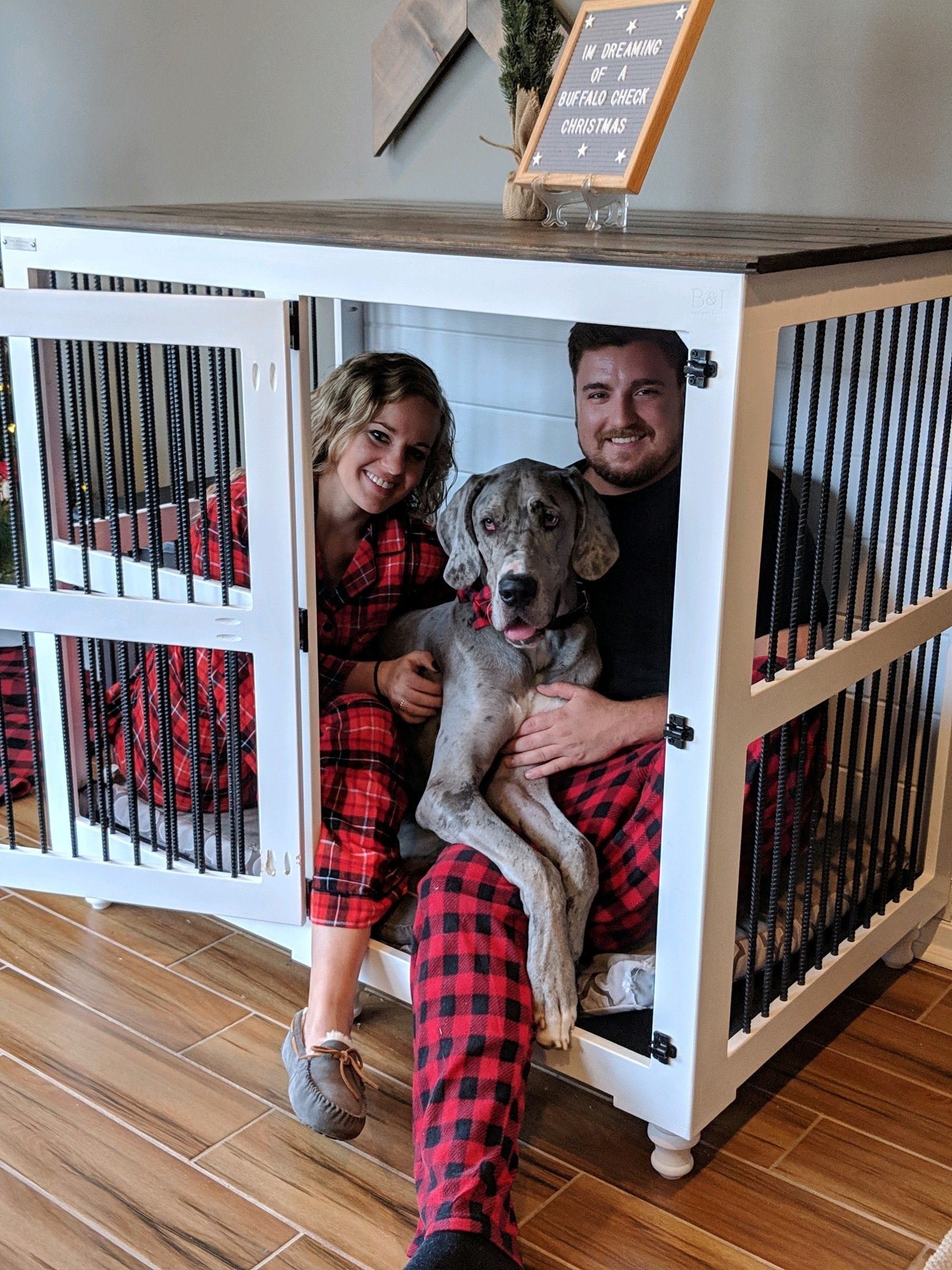 Pin By Amber Fogelquist On Animals Dog Crate Great Dane Kennels