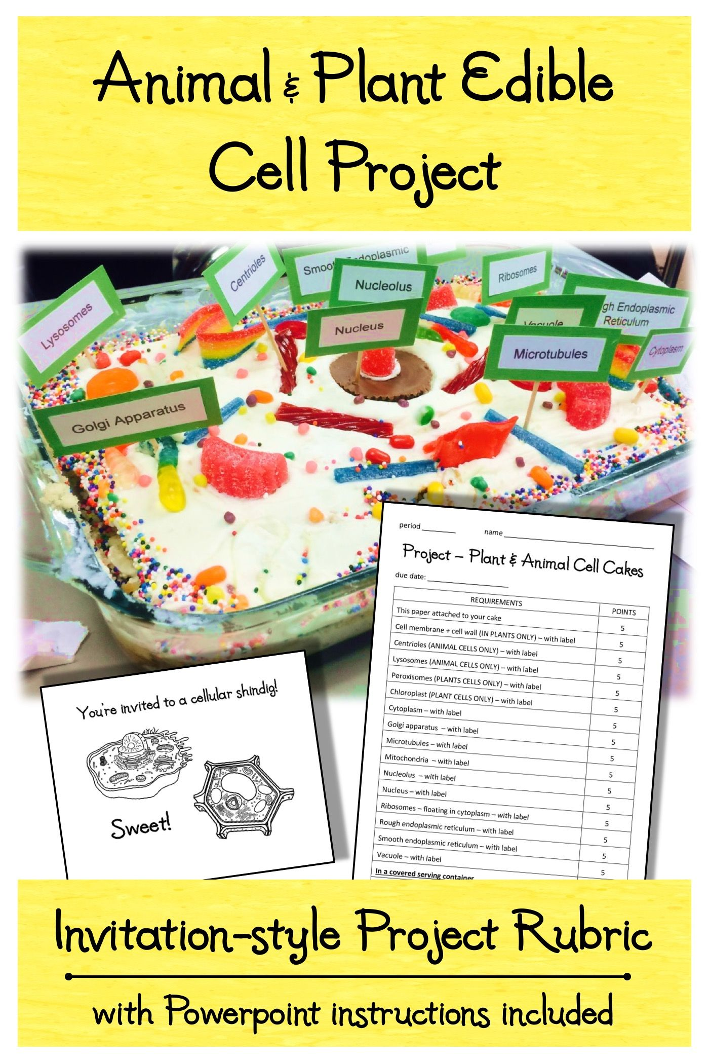 Animal & Plant Edible Cell Model Cake Project Rubric