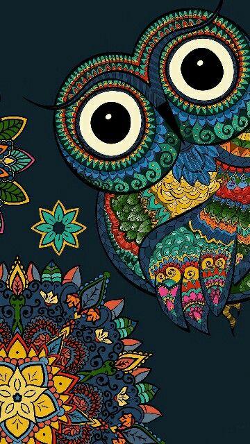 Wallpaper Owl Wallpaper Iphone Wallpaper Wallpaper Owl Wallpaper