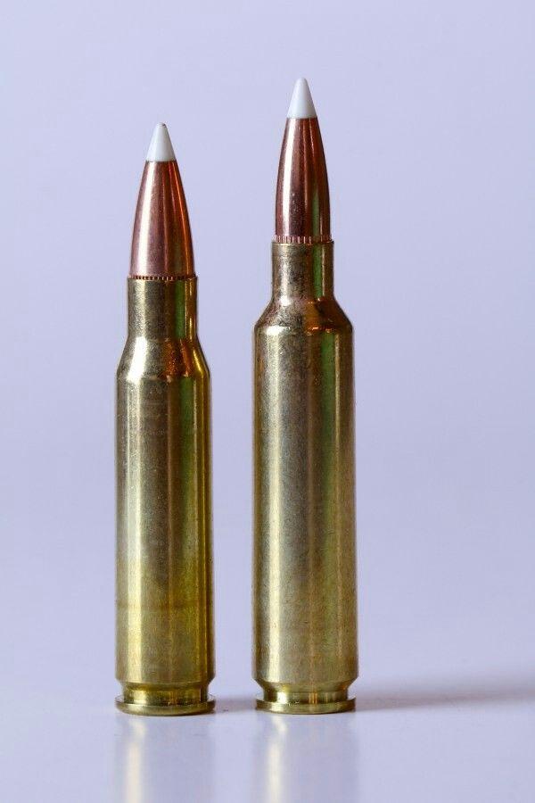 308 win vs 6 5x284 norma   Guns   Guns, Guns, ammo, Weapons