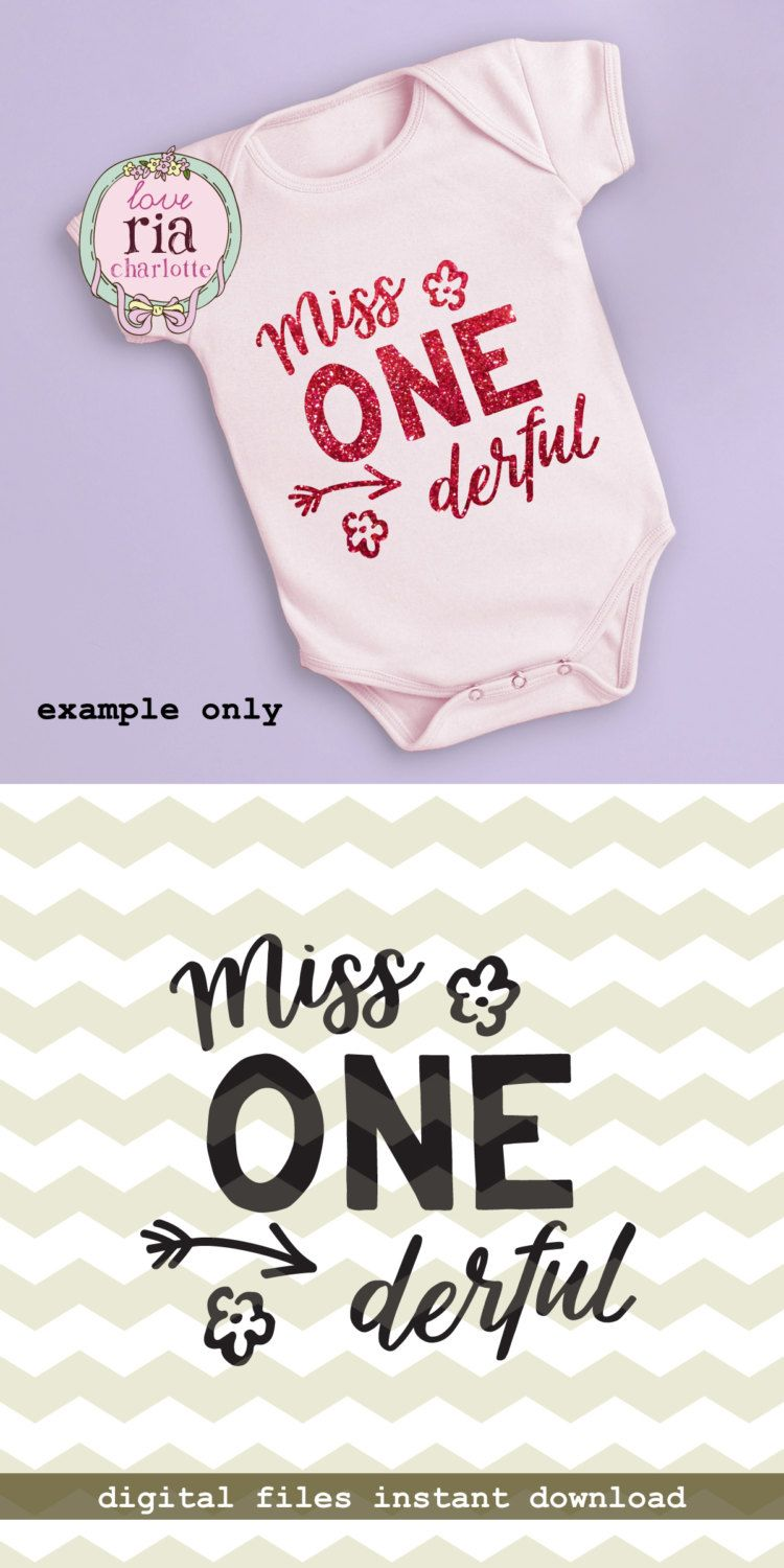 Miss ONE derful onederful cute girl first birthday fun