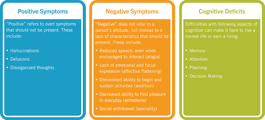 Image result for positive negative and cognitive symptoms of schizophrenia