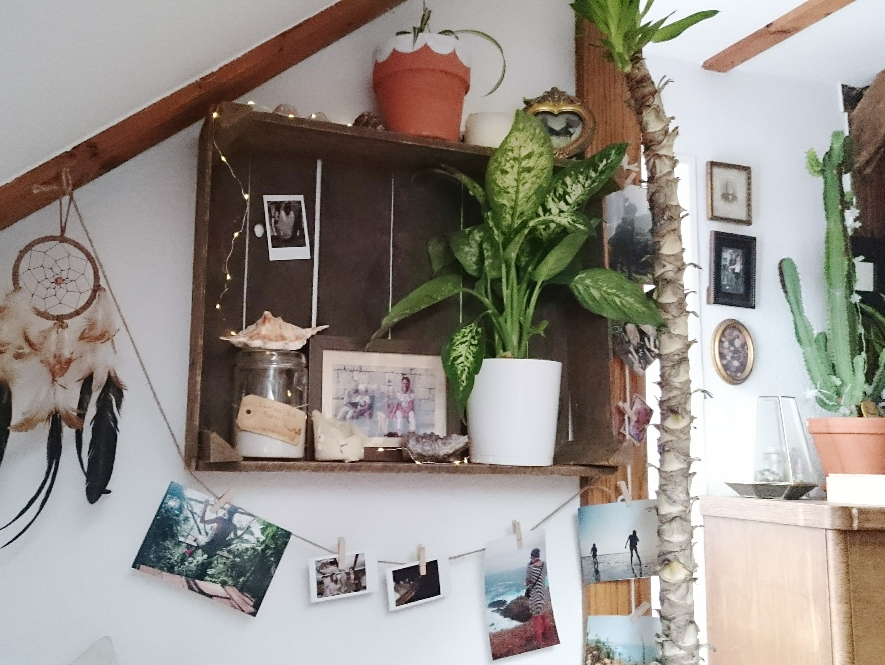 Little Plant Shelf