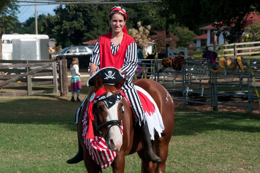 horse costumes for horses | Pirate costumes for horses
