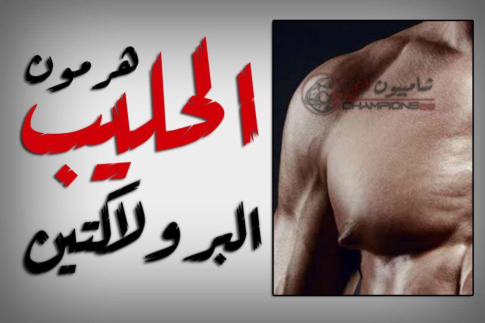 الحمايه من البرولاكتين في كورسات كمال الأجسام مضادات التأنيث Arabic Calligraphy