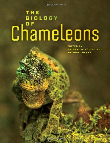 Robot Check Animal Books Biology Chameleon