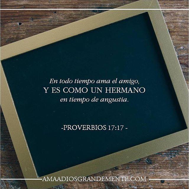 David Su Historia - Nuestra Historia Semana 5 /  Jueves Lectura - Proverbios 17:17;18:24  Devocional -  Proverbios 17:17 ____________________________ ¿De qué manera habla Dios a tu vida con los versículos de hoy? Si te animas, comparte tu estudio personal #AmaaDiosGrandemente #estudiobiblico #ComunidadADG #MujeresdelaPalabra