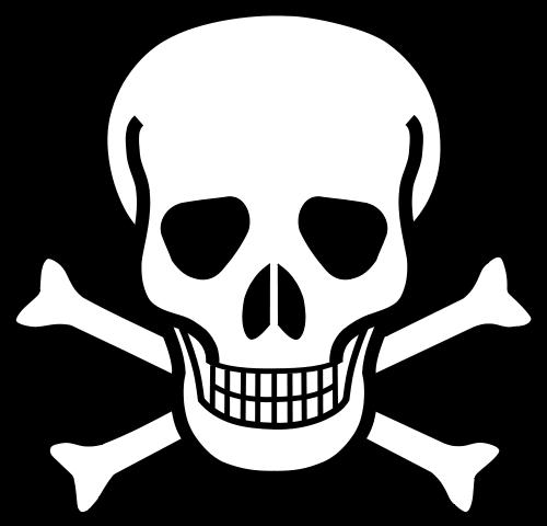 Skull And Crossbones Poison Skull Coloring Pages Skull Skull Template