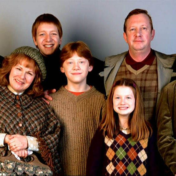"Which Hogwarts How Do You Belong To: Which ""Harry Potter"" Family Do You Belong In?"