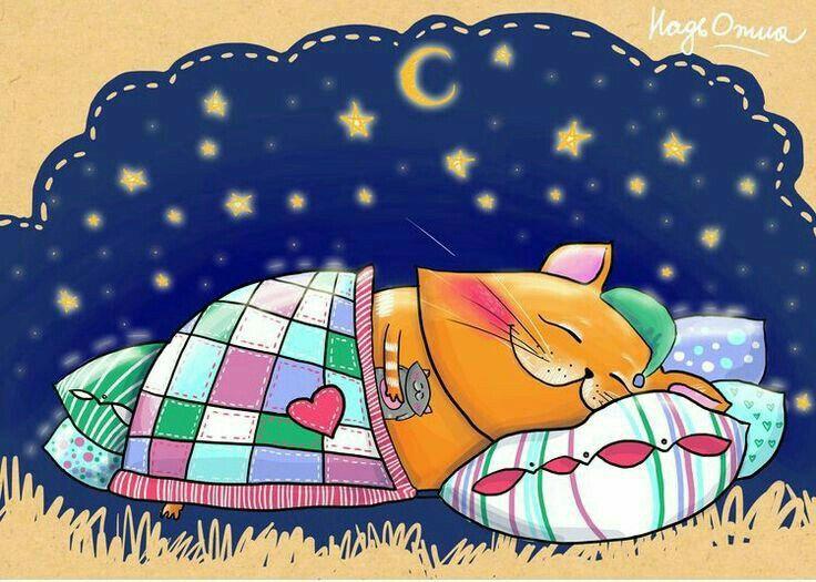 практически все пора спать доброй ночи картинки сложный