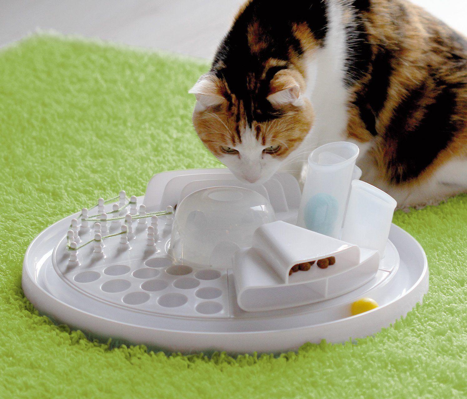 Beschäftigungsspielzeug Katzen Katzenspielzeug (mit
