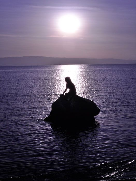 Isnt It Little Early To Give Up On >> This Isn T The Little Mermaid Never Give Up Your Voice To Be A Part