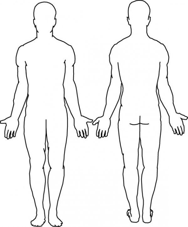 Body Outline Coloring Page Body Outline Body Template Human Body Diagram