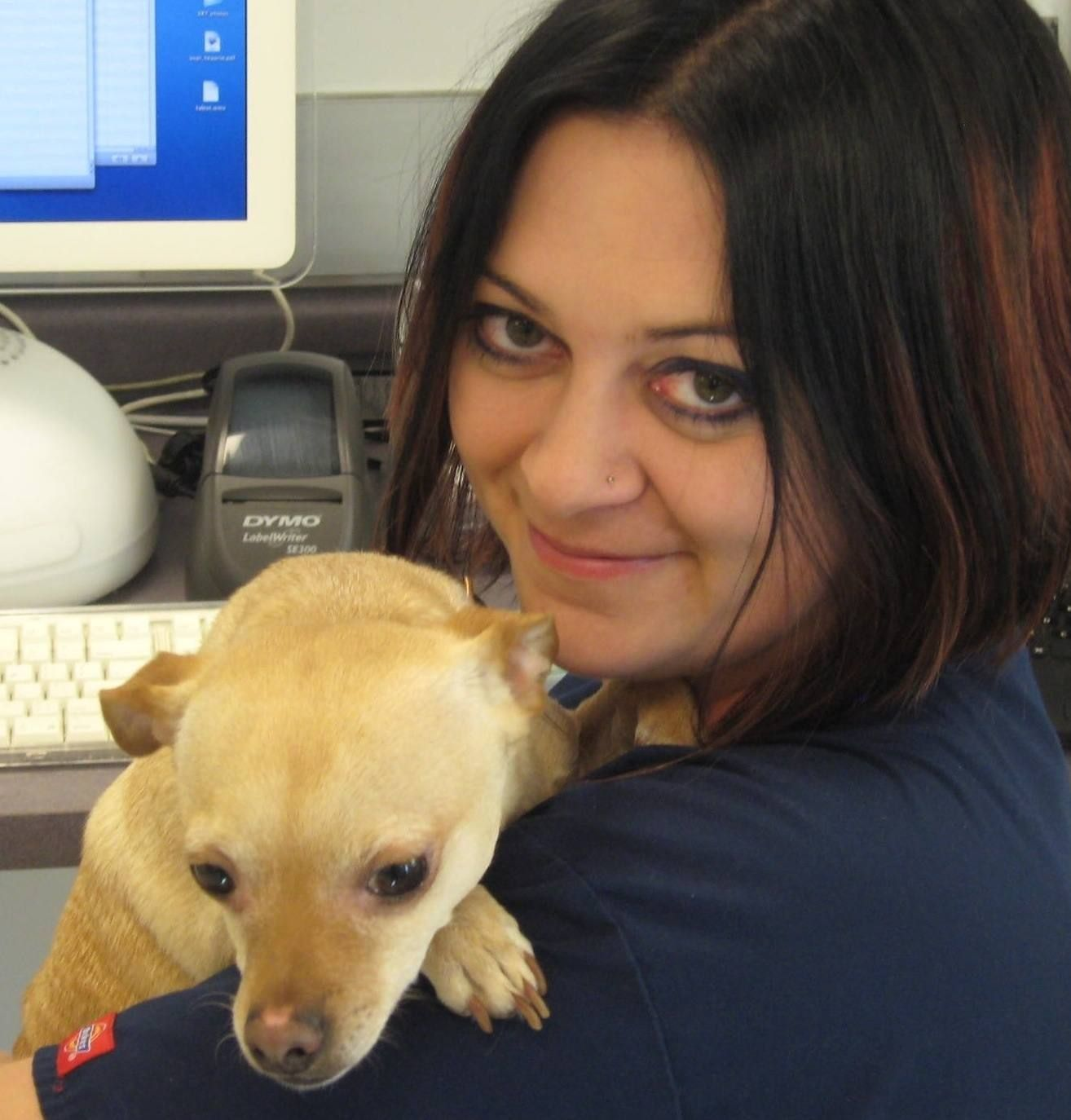 Earn your bachelors degree in veterinary technician and