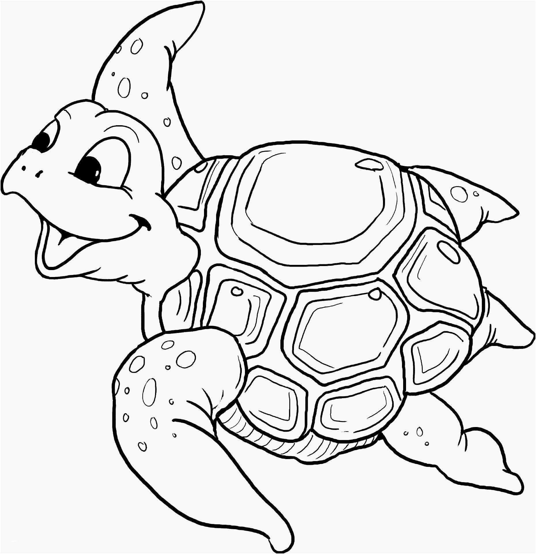 Neu Malvorlagen Ninja Turtles Cute Canvas Paintings Cute Canvas Sea Turtle Tattoo