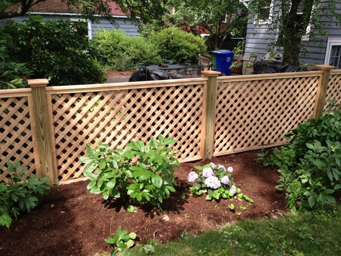 Lattice on fensu pinteres for Landscaping ideas with fences