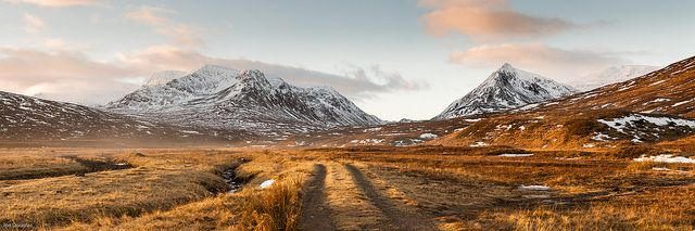 Ben Alder Forest by alanach, via Flickr