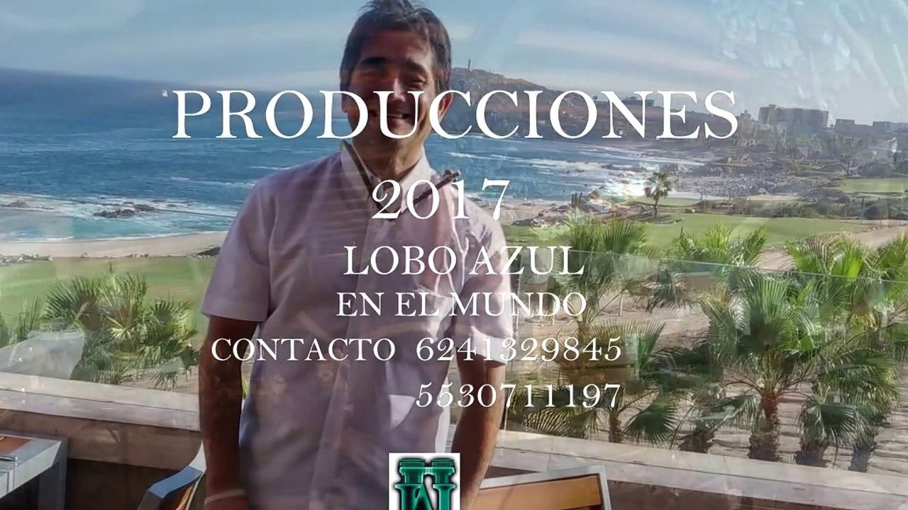 LOBO AZUL Y ESTOY PERDIDO
