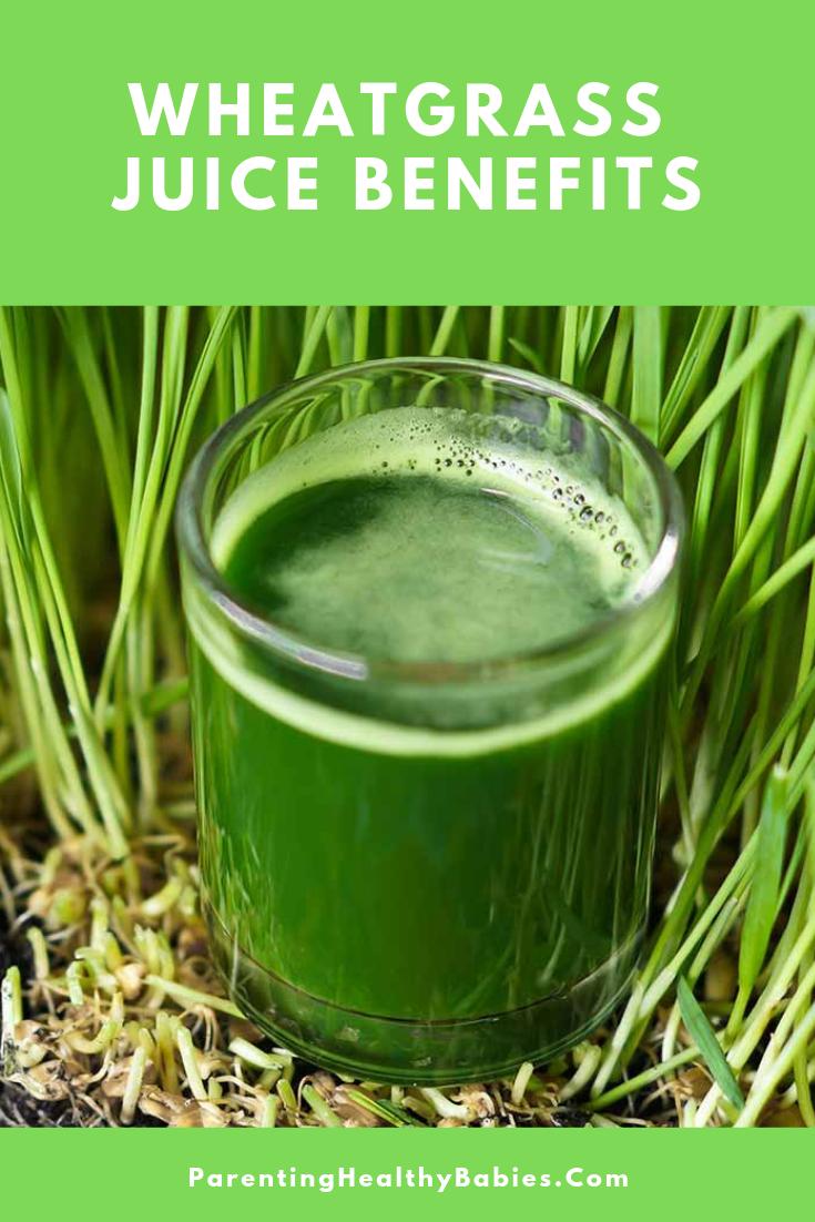 11 amazing benefits of drinking wheatgrass juice | wheat