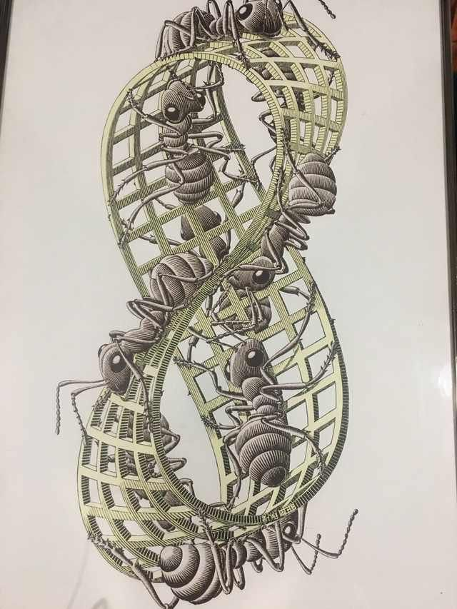 MC Escher Möbius strip 2 print?