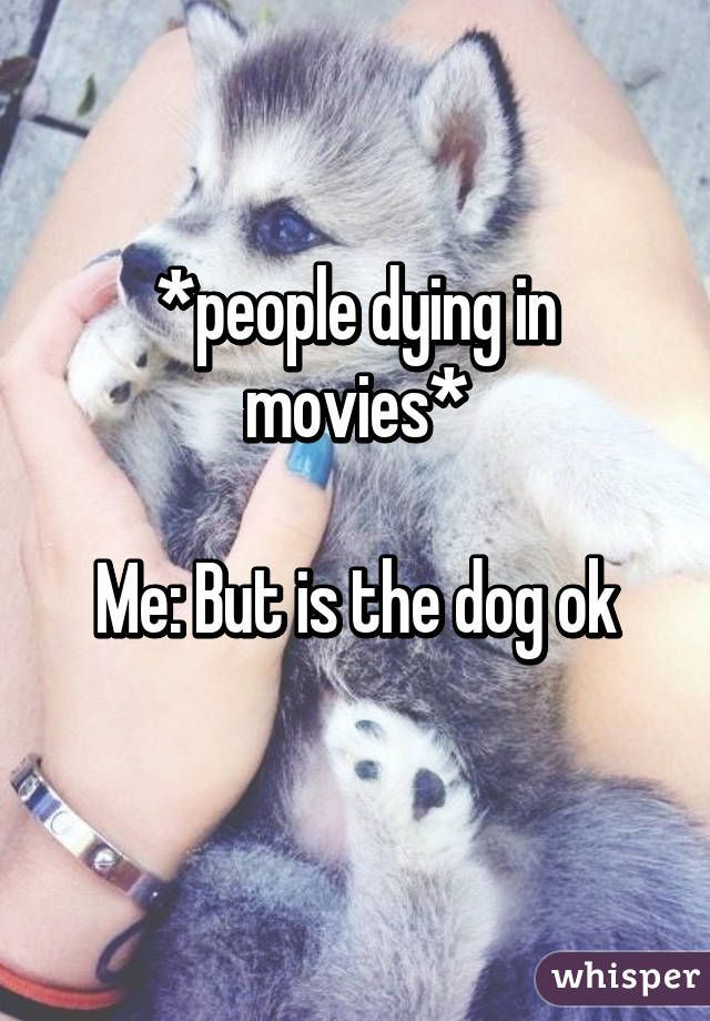People Dying In Movies Me But Is The Dog Ok Grappige Memes Te Grappig Grappig