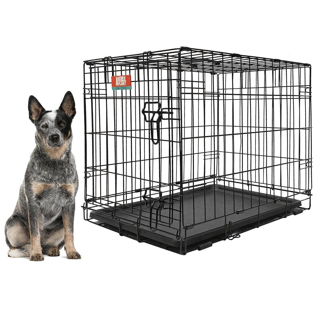 Animal Planet Collapsible Metal Crate W Removeable Tray Find