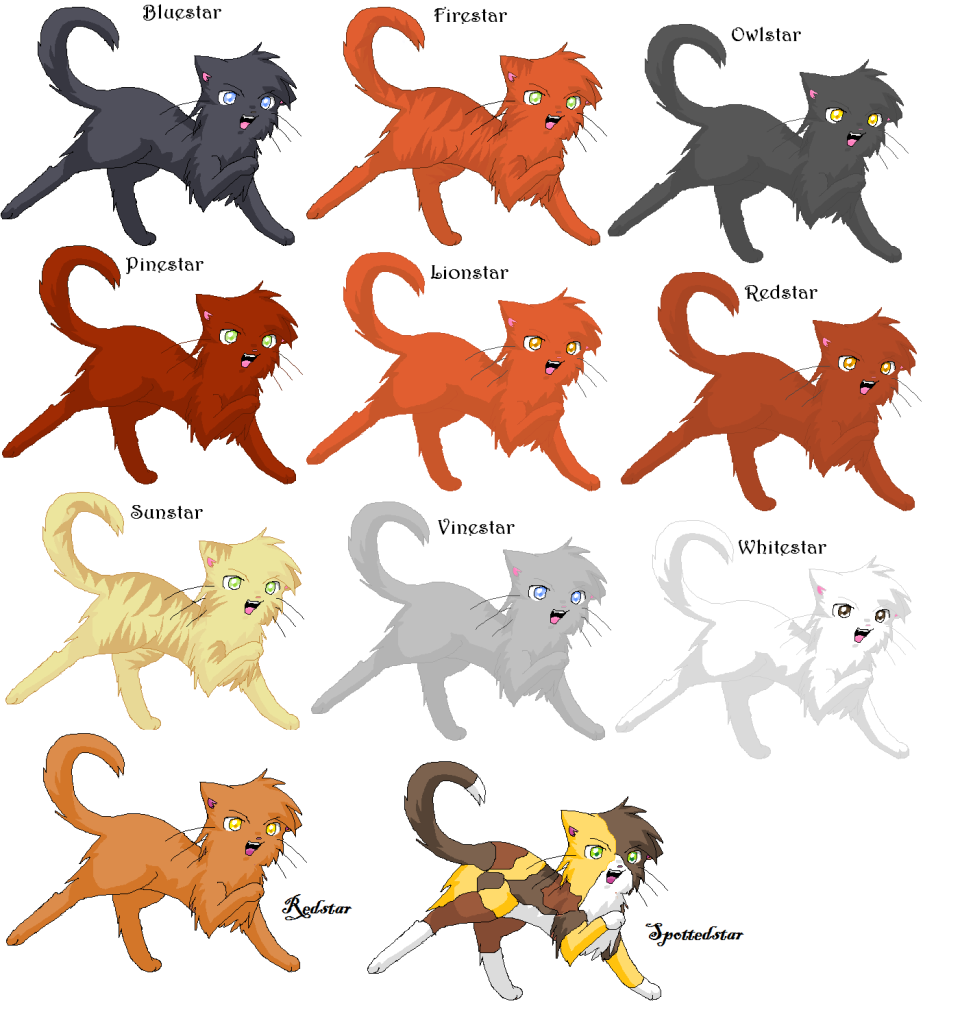 Warrior Cats Kit To Leader Bloodclan: ThunderClan Leaders