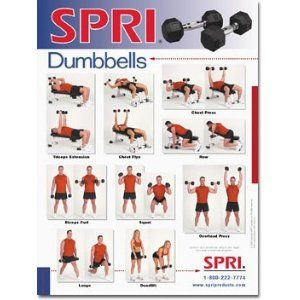 exercise dumbbell workout chart  workout posters abs