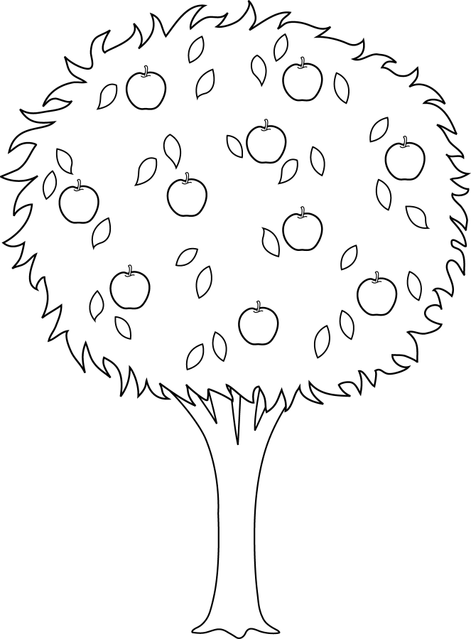 Colorable Apple Tree And Fruits Coloring Sheet Tree Coloring Page Tree Outline Orange Tree