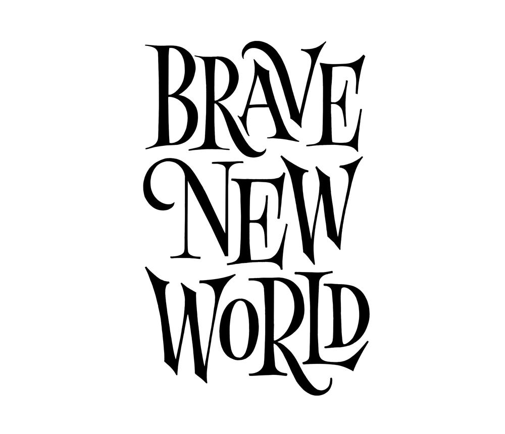 Brave New World #tanyacherkiz #letters #lettering #handlettering #typography #dailytype #sketches