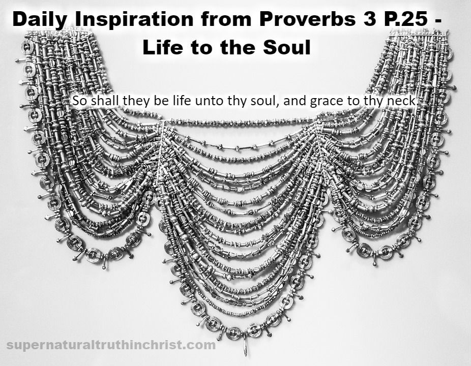 Life to the Soul - Daily Inspiration P.25 is a daily devotional that is concentrating on the wisdom of the book of Proverbs.