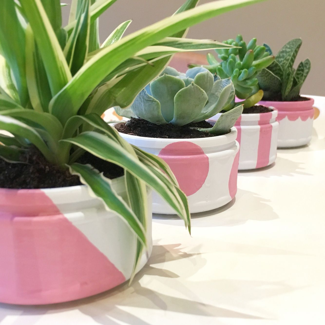 DIY up-cycled ramekin G desert pot succulent planters