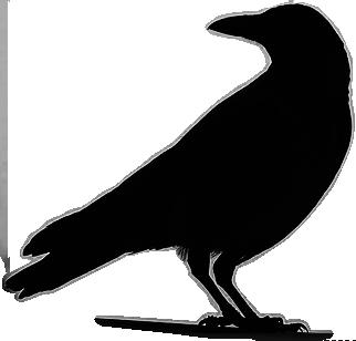 Raven Emergency Management Platform Raven Emergency Management Platform Crow Silhouette Silhouette Art Bird Silhouette