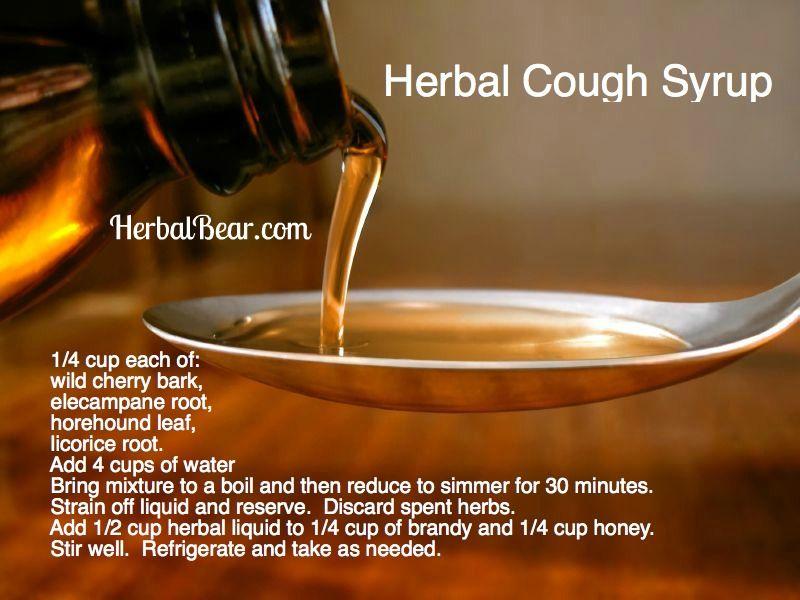 Herbal Cough Syrup  www.herbalbear.com