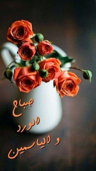 صباح الورد و الياسمين Good Morning Flowers Good Morning Greetings Good Morning Arabic