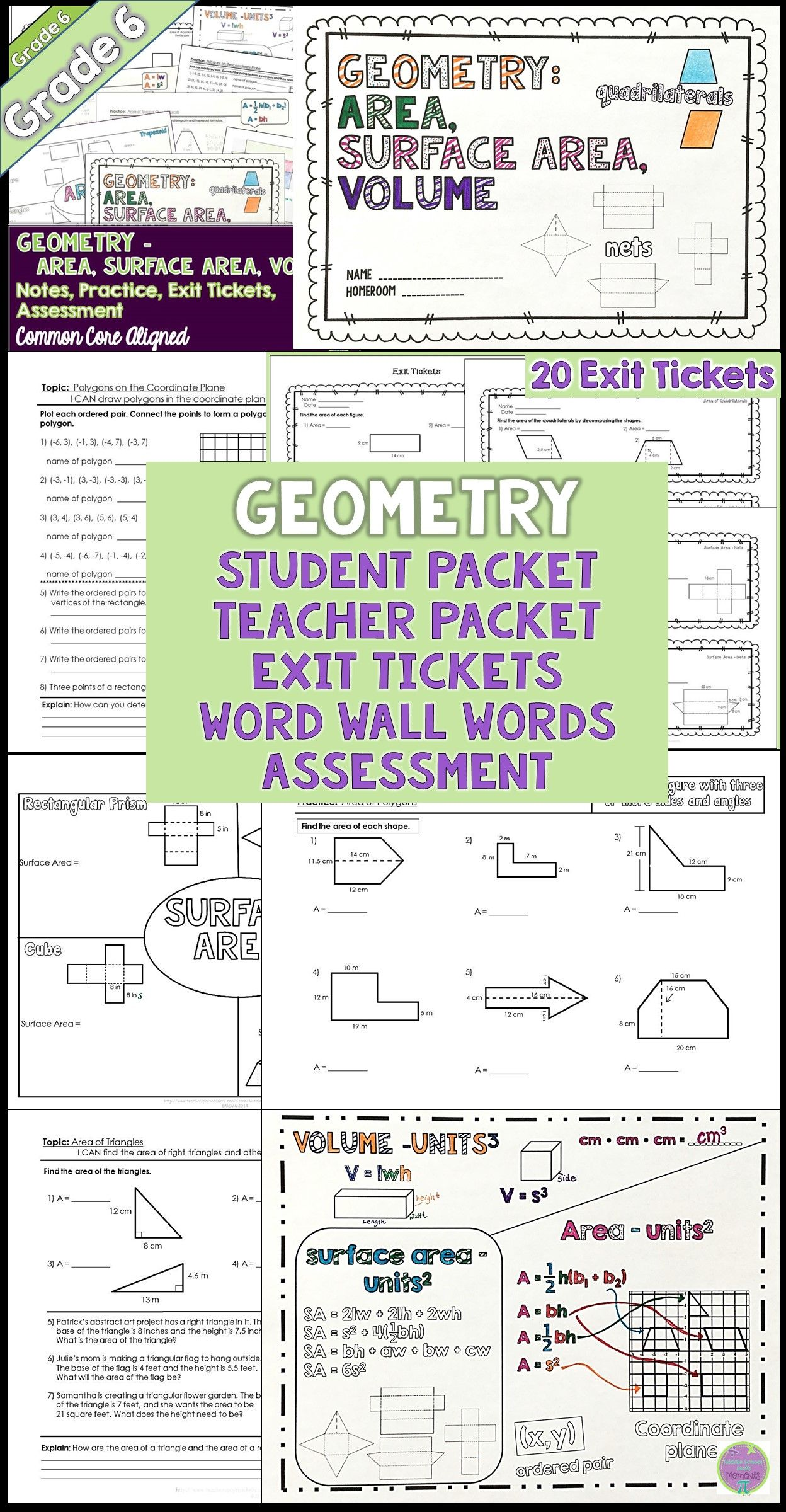 6th Grade Math Geometry Unit